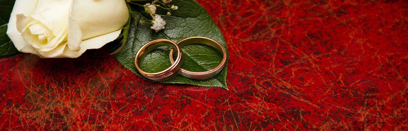 కమ్మ వారికి మాత్రమే - Kamma Matrimony, Kamma Brides